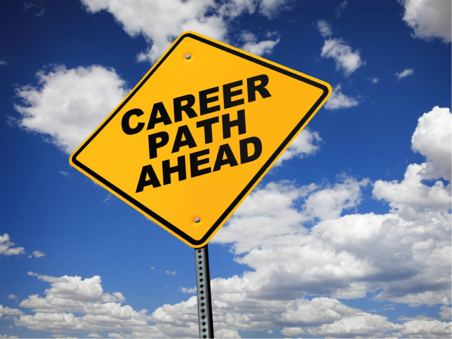 Reflections on the Technology Career Matrix and Its Pitfalls