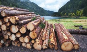 Logging patterns and their performance impact